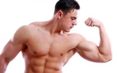 Ganar masa muscular.