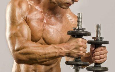 Qué son las rutinas de definición muscular.